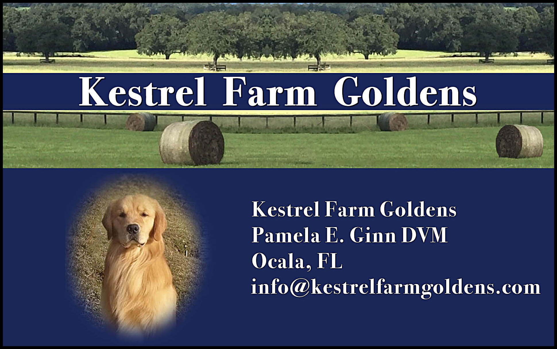 Kestrel Farm Goldens